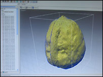 3D scan of a walnut