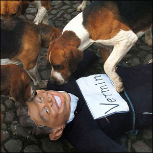 Effigy of Tony Blair bitten by dogs