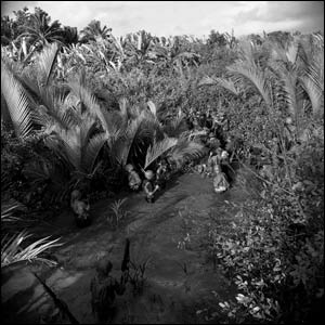 Troops in the Mekong Delta
