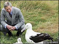 Prince Charles visited an albatross reserve in New Zealand