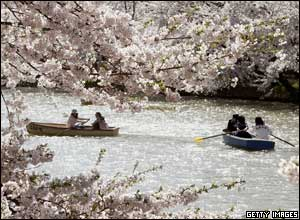 Locals enjoy a boat ride on a lake in Japan