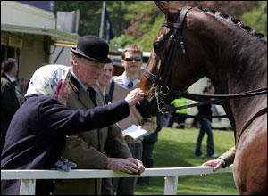 The Queen Strokes One Of Horses During Four Day Gala At Her Berkshire Estate