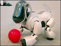 Robodog Aibo playing with a plastic ball