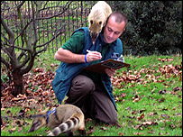 Keeper and coati