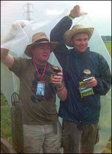 Glastonbury drinkers
