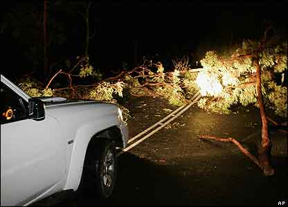 During the storm, trees were brought crashing onto roads and cars. Twelve people were injured but nobody died
