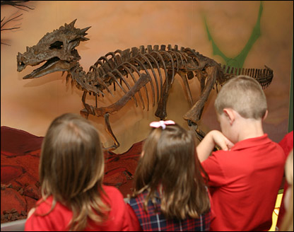 Kids check out the skeleton of Dracorex hogwartsia. Wonder if they're Potter fans too?   Pic: Children's Museum Of Indianapolis