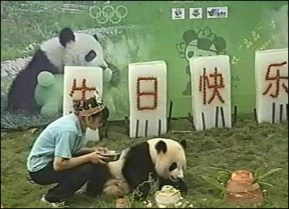 Jing Jing is very famous because she is one of China's mascots for the 2008 Olympic Games which will be held in Beijing