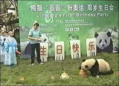 Jing Jing the panda has celebrated her first birthday with a party at the giant panda research base in south-western Sichuan, China