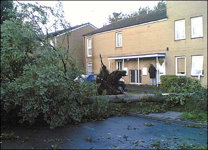 Mini tornadoes have swept across parts of Yorkshire and caused damage to trees and homes.  One views, Alex, sent us these pictures of the chaos it caused in Leeds
