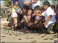Kids release baby sea turtles in Mexico
