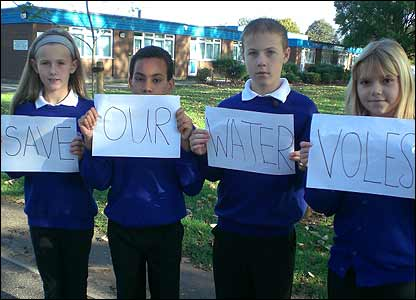 Kids at a school in Humberside are trying to save a group of water voles