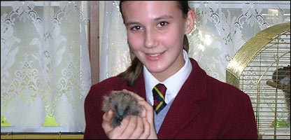 Holly and a hedgehog