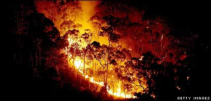 The fire rages out of control in the alpine village Mt Beauty