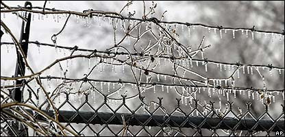Barbed wire covered in ice