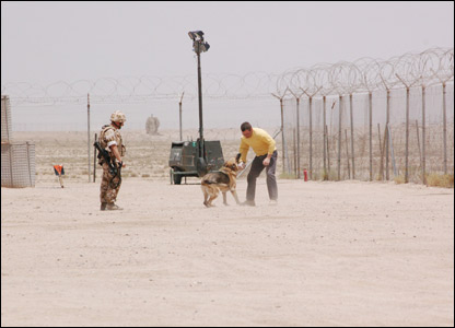 A military dog tackling the intruder