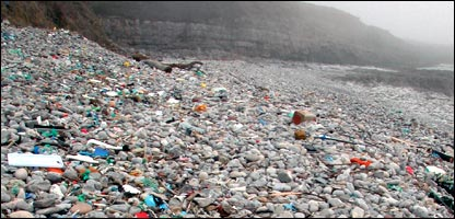 Litter on a beach. Copyright Tim Fanshawe