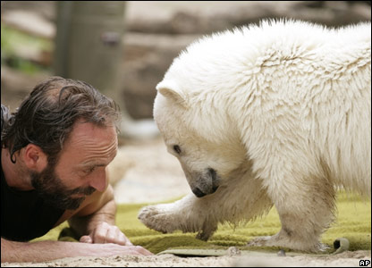 Knut the polar bear cub and his keeper