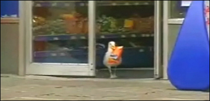 The sneaky seagull walks out of the shop with his crisps