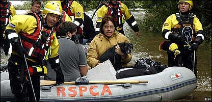 The RSPCA rescue animals from the floods