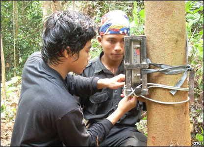 Setting up a camera trap (Image: ZSL)