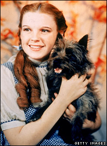 Toto with Dorothy, played by Judy Garland, in The Wizard of Oz