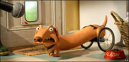 Flash the sausage dog