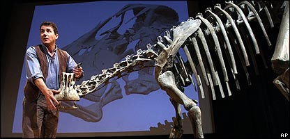 The elephant-sized dinosaur Nigersaurus taqueti with the scientist who unveiled him