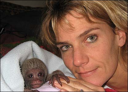 Baby woolly monkey with Alison