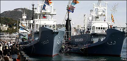 The Japanese whaling fleet