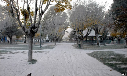 Park covered in ash