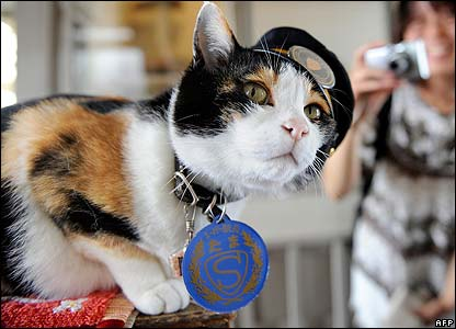 Not many people were using the station in Kinokawa in western Japan but since the tabby  became the station mascot many more people have been using it.
