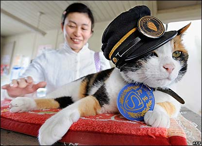 Tama was born at the station. In Japan cats are thought to be good luck.