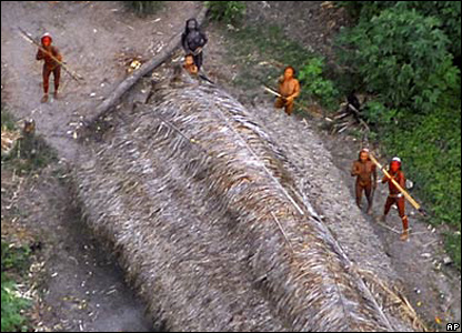 Uncontacted tribe in Brazil (All pictures: Brazil National Indian Foundation)
