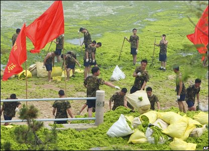 Army workers and volunteers taking part in the clean-up