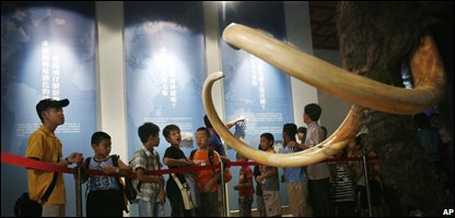 Kids gaze at the woolly mammoth model at a display opening in Taiwan