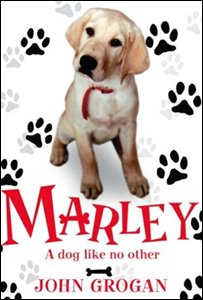 Marley A Dog Like No Other Quiz