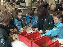 Cubs, Beavers and Scouts at a poppy factory