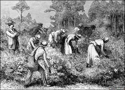 A white landowner overseeing black cotton pickers at work in Texas in the 1800s