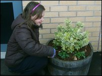 Niamh helps to look after the school plants