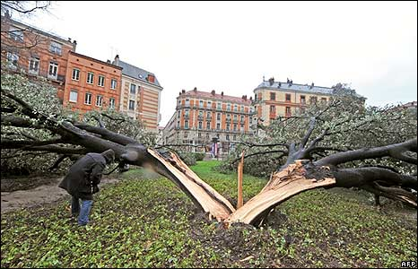 A man inspects a tree split in half during a storm in Toulouse, France
