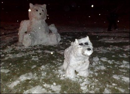 Snow teddy and dog
