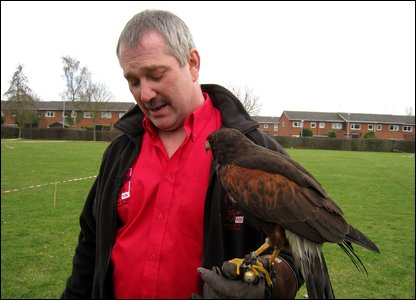 Graham Rees with the hawk