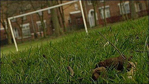 Dog poo on a playing field