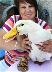 Lucky's owner Allison Morgan with the two-month-old duck