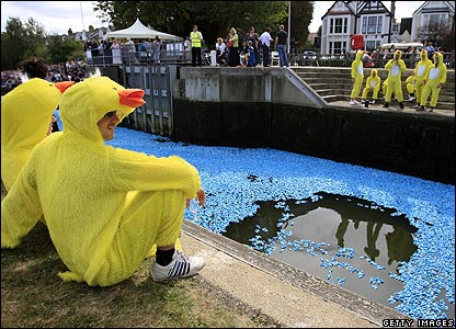 The Great British Duck Race