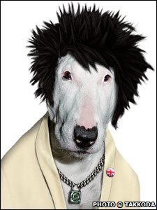 A dog as a punk