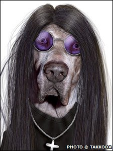 A dog dressed as Ozzy Osbourne