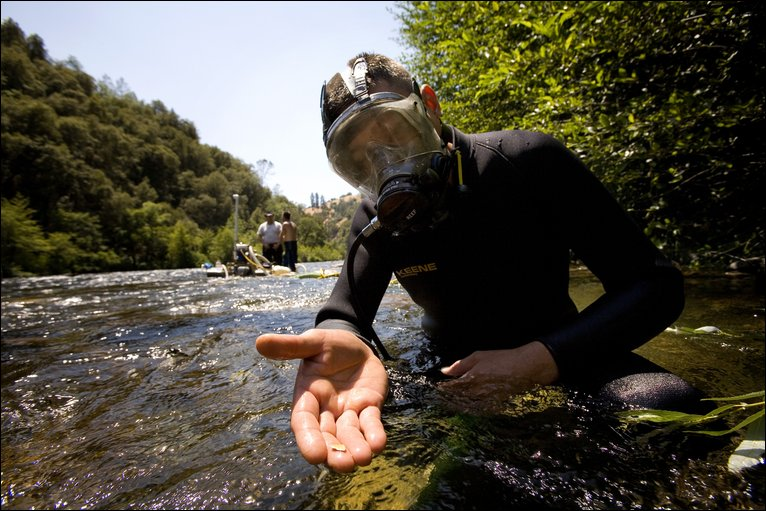 How To Find Gold In A River Gold Prospecting Equipment