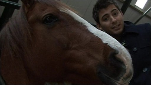 Newsround's Ricky and a horse